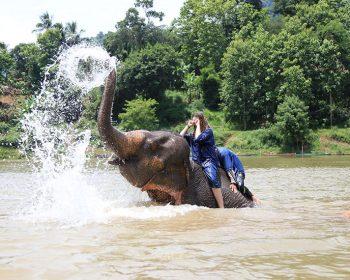 ルアンパバーンで象使いになろう!
